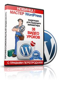81. Мастер WordPress